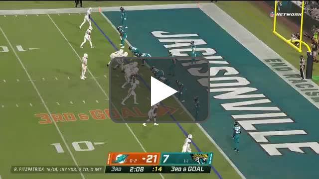 [Highlight] Ryan Fitzpatrick runs it in for a TD, extends the Dolphins' lead.